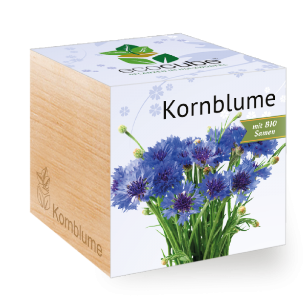"Ecocube Pflanze im Holzwürfel ""Kornblume"""