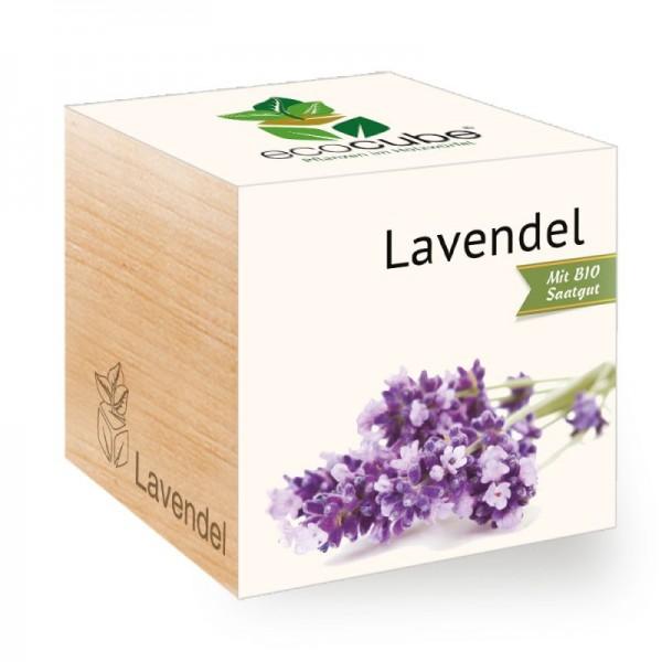"Ecocube Pflanze im Holzwürfel ""Lavendel"""