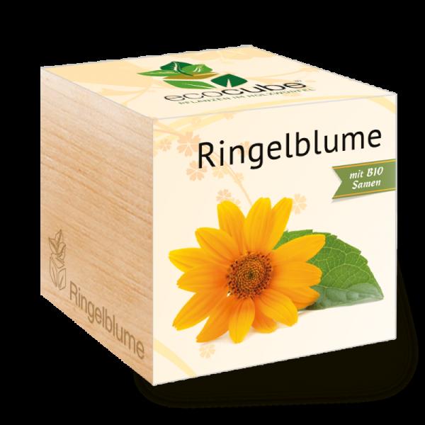 "Ecocube Pflanze im Holzwürfel ""Ringelblume"""